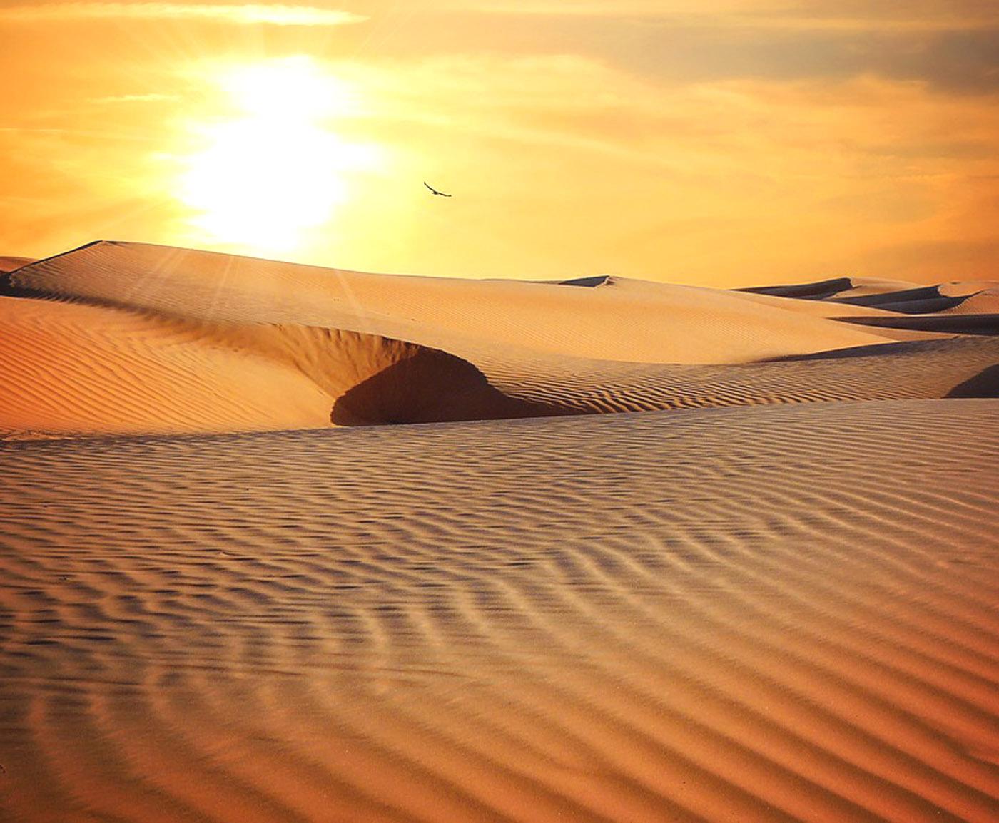 Zaplanuj swoje WAKACJE W EGIPCIE